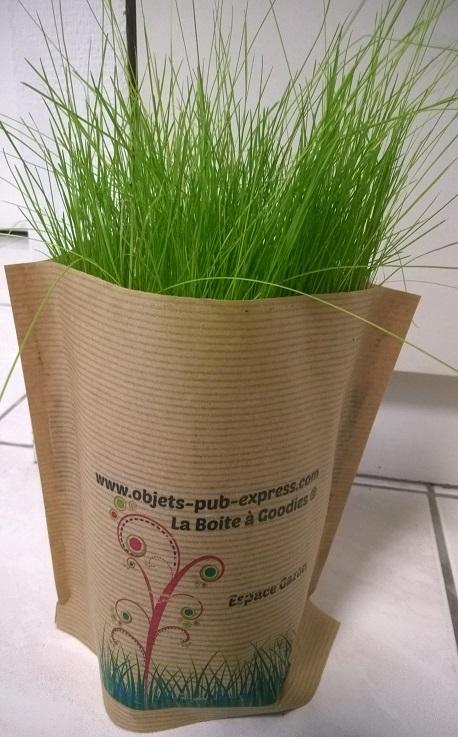 pot pop up avec kit de plantation zoom objets publicitaires personnalis s arbres plantes. Black Bedroom Furniture Sets. Home Design Ideas